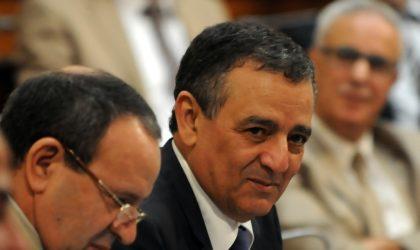 Bouchouareb : «L'Algérie doit devenir un hub minier régional»