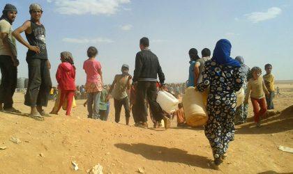 Réfugiés syriens bloqués dans le désert : le CICR préoccupé