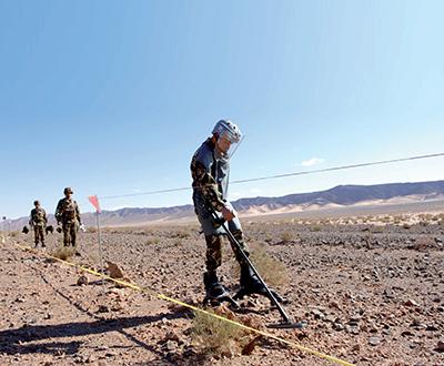 L'opération a permis l'extraction de plus 236 000 mines antipersonnel. D. R.
