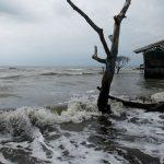 Le niveau des eaux monte avec une poussée d'environ 3,3 millimètres par an. D. R.