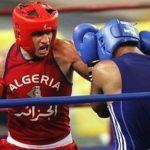 Les boxeurs algériens ont bénéficié d'un tirage un peu difficile. D. R.