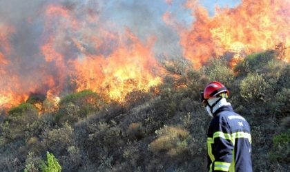 Violents incendies en France : la situation «hors de contrôle»