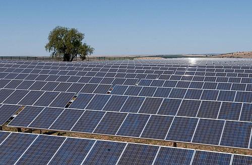 L'ambitieux programme de l'Algérie vise à produire 40% de l'électricité grâce à l'énergie verte. New Press