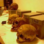 Les restes mortuaires doivent être rapatriés pour avoir une digne sépulture. Photo : Ali Farid Belkadi