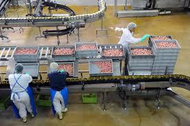 Plusieurs violations des règlements de production et de commercialisation. D. R.
