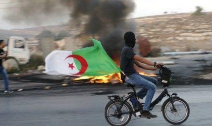 Un Palestinien brûle le drapeau algérien : indignation générale à Gaza et en Cisjordanie
