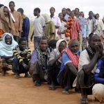 La situation des réfugiés africains au Yémen inquiète l'ONU. D. R.