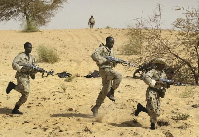 Le Sahel, une préoccupation majeure. D. R.