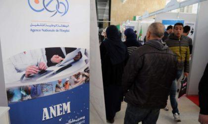 Algérie: le bâtiment et les services ont perdu 90000 emplois