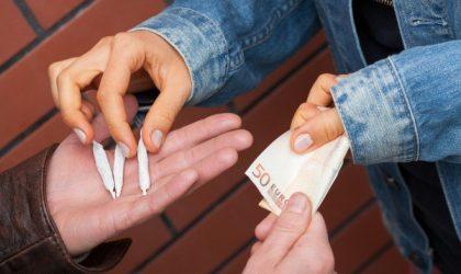 Trafic de drogue à Marseille : fournisseurs marocains, main-d'œuvre algérienne