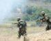 Huit terroristes abattus à Tipasa