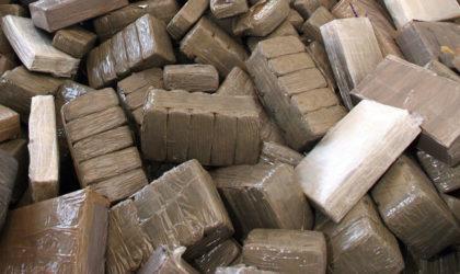 Plus de 19 tonnes de résine de cannabis saisies en quatre mois en Algérie