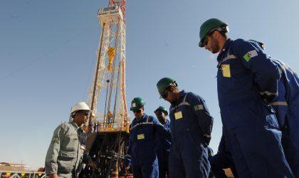 Le domaine minier dans le Nord algérien est sous-exploré
