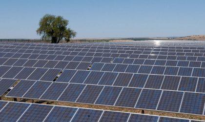 Sonatrach-ENI : création d'une centrale photovoltaïque