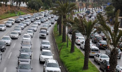 IDH : l'Algérie se classe derrière le Golfe et loin devant le Maroc et l'Egypte