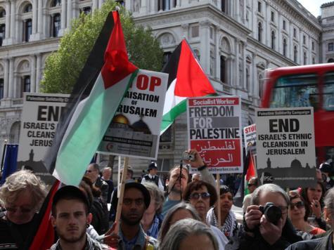 La manifestation a été organisée par plusieurs associations britanniques. D. R.