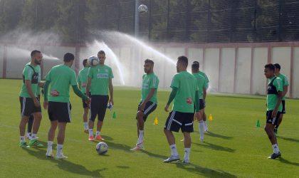 Classement Fifa : l'Algérie scotchée à la 54e place