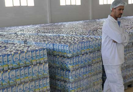 Il faut une meilleure politique pour un meilleur développement de la filière laitière. New Press