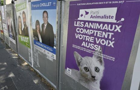 Les Français iront-ils voter ? D. R.