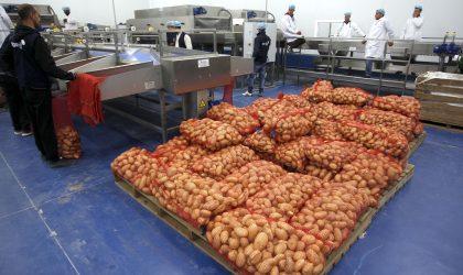 L'Algérie approvisionne l'émirat du Qatar sous embargo en denrées alimentaires