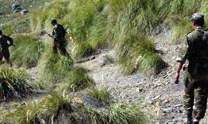Médéa: deux terroristes abattus