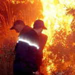 feu, incendie, forêt, Béjaïa