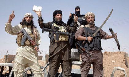 Un Français d'origine tunisienne pourrait succéder à Al-Baghdadi