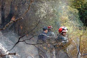 Feux de forêt incendies