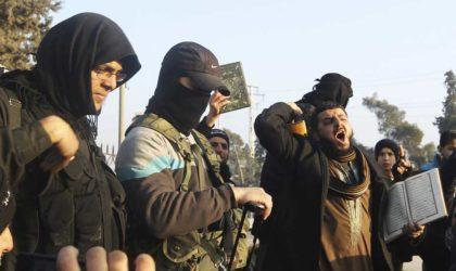 La France rapatrie des enfants de terroristes français de Syrie