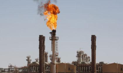 Le prix du pétrole chute à deux jours de la réunion de l'Opep