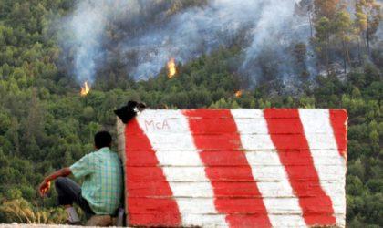 Feux de forêt: les victimes seront indemnisées