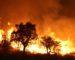 Des réseaux électriques gravement endommagés par les feux de forêt