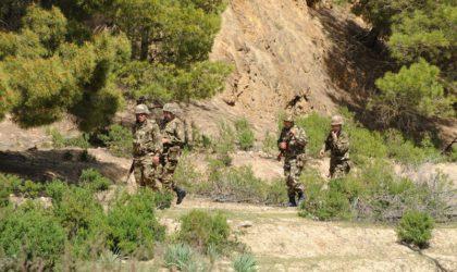 Le terroriste éliminé à Lakhdaria identifié