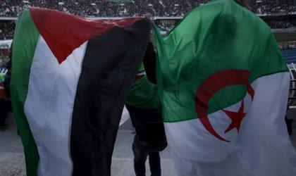 La caravane de soutien à Gaza rentre bredouille : camouflet pour l'Algérie ?