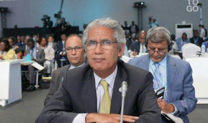 Sommet Afrique-Japon : l'UA déjuge le Maroc