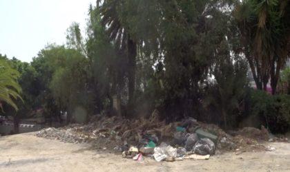 Jardins publics : havres de paix ou coupe-gorge ?