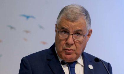 Mise en œuvre de l'accord Opep-non Opep : des pays «rappelés à l'ordre»