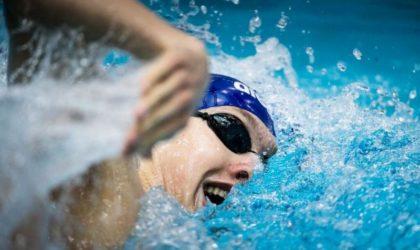 Championnats du monde juniors de natation d'Indianapolis : entrée en lice des Algériens