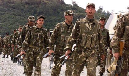 Le MDN appelle le «reste» des terroristes à déposer les armes