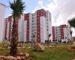 Priorités du gouvernement Ouyahia: logement, énergie, habitat et agriculture