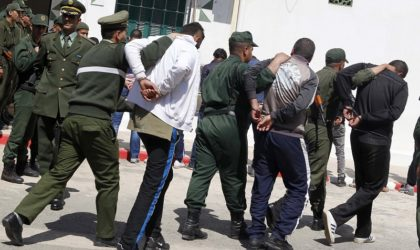 Blida: démantèlement d'une bande criminelle à Ben Chaâbane