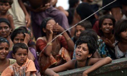 Un Algérien dénonce le mutisme arabe à partir d'un camp de Rohingyas