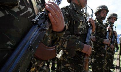 Un chef terroriste se rend à Skikda après l'appel de l'ANP