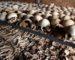 BNP Paribas accusée de «complicité de génocide» au Rwanda