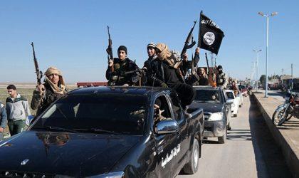 Comment des terroristes français continuent à recevoir leurs allocations