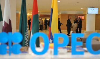 Opep : l'Algérie continuera à jouer un «rôle-clé» dans tout accord