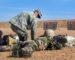 Attentat meurtrier au Niger: la menace sur les frontières algériennesse précise