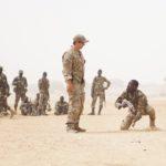 Armée américaine Niger