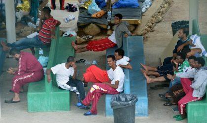 Transfert de plus de 600 ressortissants nigériens vers Tamanrasset