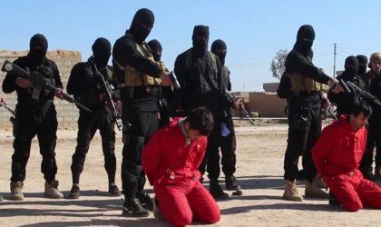 Des journalistes britanniques révèlent : la CIA finance la propagande de Daech